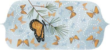 41e anniversaire de la découverte de la réserve de biosphère du papillon monarque