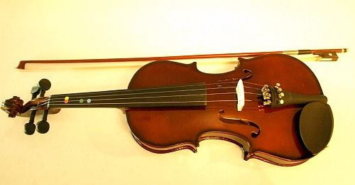 Don't waste $$ on a cheap violin, you'll end up spending more in the long run!