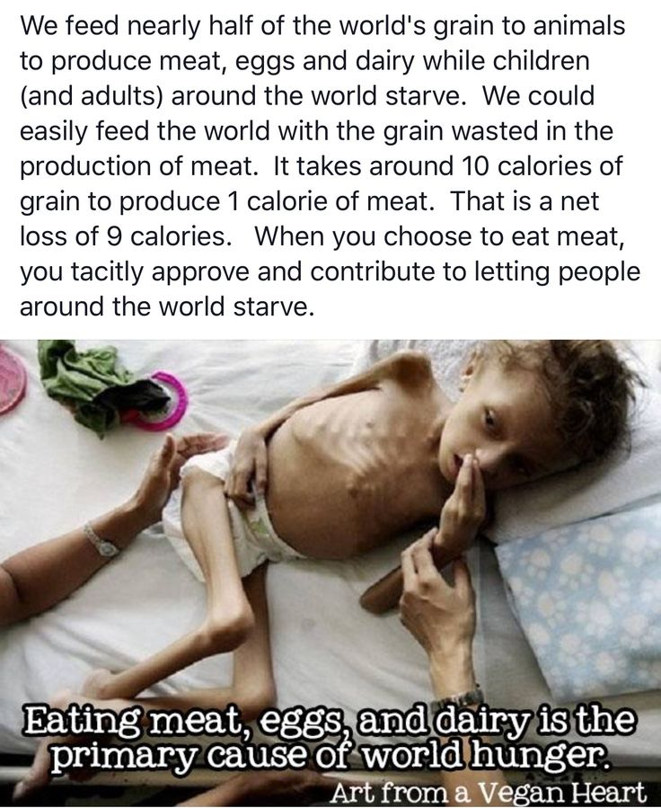 Every time you don't buy meat or animal products, you are decreasing world hunger. It may not seem like it's going to be today that hunger stops all-together, but you're making a future where it is possible