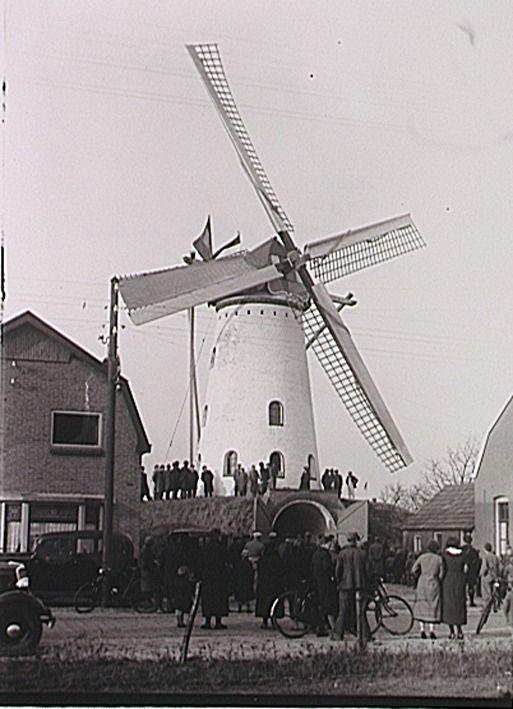 Aalst, Raadhuisstraat Pand nr 28; na brand herstelde bergkorenmolen  Fotopersbureau Het Zuiden (fotograaf) - 1936