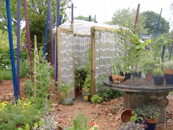 greenhouse: Green Houses, Gardens Ideas, Greenhouses Built, Recycled Bottle, Greenhouses Free, Recycled Plastic Bottles, Wine Bottle, Plastic Bottle Greenhouses, Diy