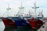 The Fleet's In Santander Spain