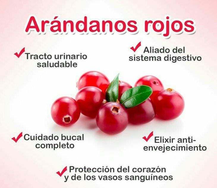 ¿Conoces los #beneficios de los #arandanos rojos para tu #salud?