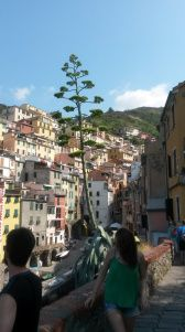 Steep hills in Riomaggiore, you need to be fit to live in Cinque Terre