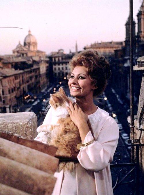 solo-vintage:  Sophia Loren in Ieri, Oggi, Domani (1963)