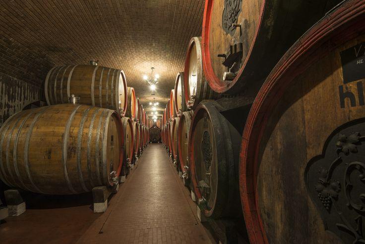 Tommasi old cellar in Valpolicella Verona Italy www.tommasi.com
