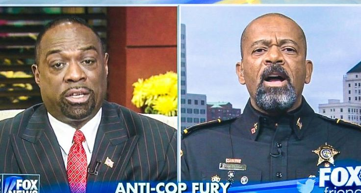 'There is no police brutality in America': Fox sheriff blows up at 'subhuman creeps' in Black Lives Matter