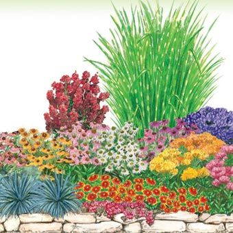and will fill your yard with color over the entire summer all plants shown in diagram below planting instructions and garden plan included - Flower Garden Ideas Partial Sun