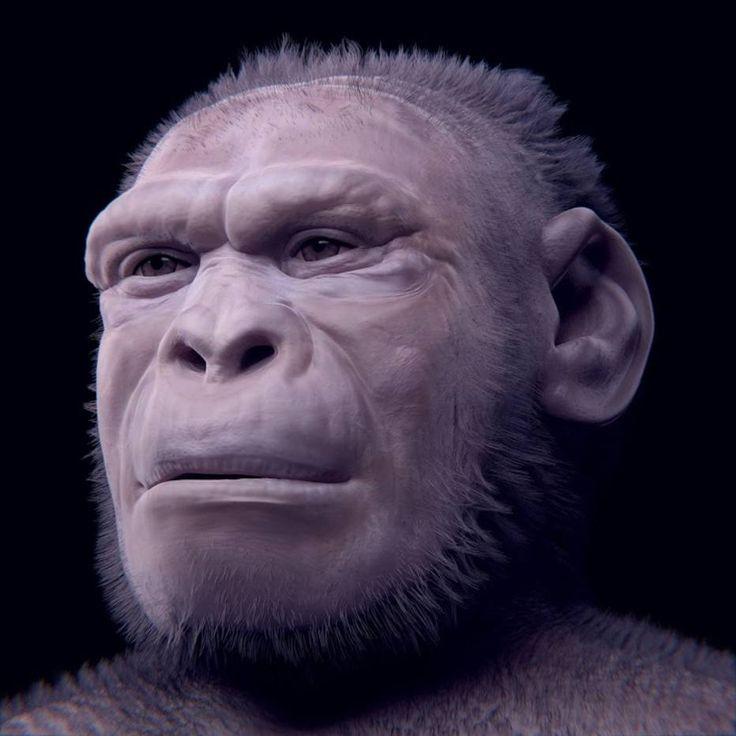 Homo habilis - reconstruction by Cicero Moraes