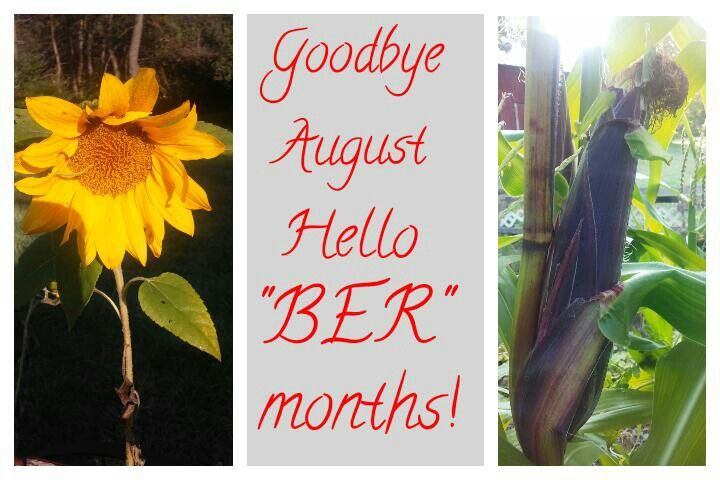 "~ ""Goodbye August hello ""BER"" months"" picture quote ~ month quotes ~ #PhotoTakenByRosemary #CapturedIt"