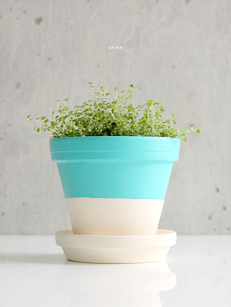 Painted pot (by dellie): Plants Can, Terra Cotta, Idea, Paintings Flowers Pots, Terracotta Can, Color, Planters, Diy, Paintings Pots