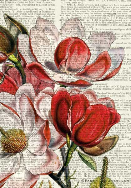 Magnolie ich Wörterbuch print von FauxKiss auf Etsy