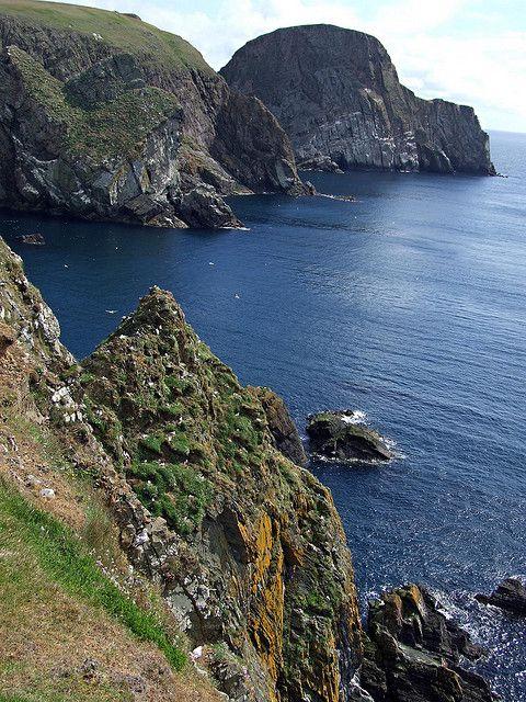 Sheep Rock, Fair Isle, Orkney, Scotland | Sheep to Shawl ...