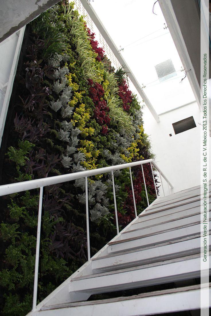 Muros Verdes en la entrada de edificio de departamentos