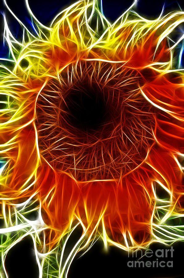 fractal sunflower http://johnpirilloauthor.blogspot.com/