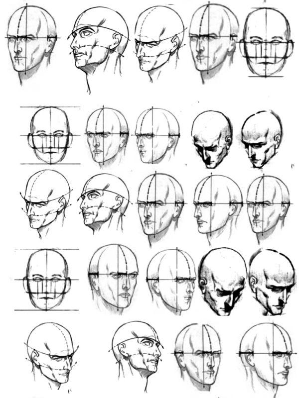 human head drawing - Pesquisa Google