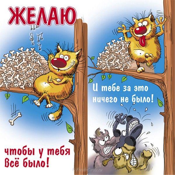 Prikolnye Otkrytki S Dnem Rozhdeniya 35 Foto Smeshnye Otkrytki