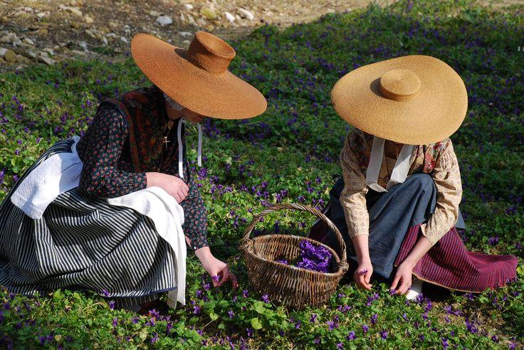 Provencal women in a field of violets - Fragonard PARFUMEUR #Fragonard #Provence #Flowers #Harvest #Violet
