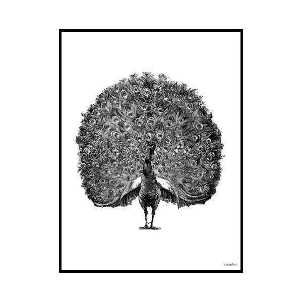 Poster Peacock & Ram 30x40cm - Vanilla Fly - Vanilla Fly - RoyalDesign.se