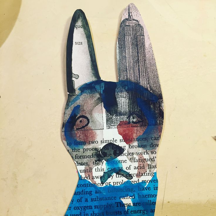 Section of an incomplete collage dog