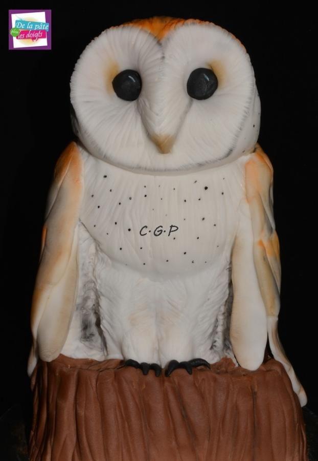 """Owl """"effraie"""" - Cake by De la Pâte plein les doigts"""