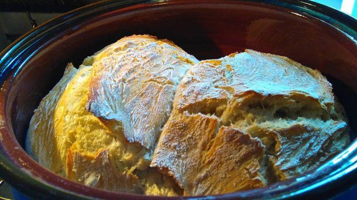 Θέλετε να φτιάξετε στο σπίτι σας ψωμί ζεστό, τραγανό και πεντανόστιμο; Αυτή εδώ η συνταγή για ψωμί στη γάστρα είναι τέλεια και πολύ εύκολη, αφού δεν χρειάζεται σχεδόν καθόλου ζύμωμα. Το αποτέλεσμα θα σας εκπλήξει αφού το ψωμί που θα ψήσετε δεν θα έχει τίποτε να ζηλέψει από το χωριάτικο ψωμί που αγοράζετε από το φούρνο. Εγώ χρησιμοποιώ λευκό αλεύρι για όλες τις χρήσεις αλλά εσείς μπορείτε να βάλετε στο ψωμί σας ό,τι αλεύρι θέλετε.