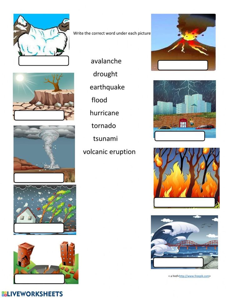 Natural Disasters Online And Pdf Exercise Natural Disasters Activities Natural Disasters Natural Disasters For Kids