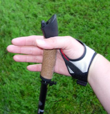 How to Use Poles for Nordic Walking: Align the Pole Tip and Adjust Hand Straps