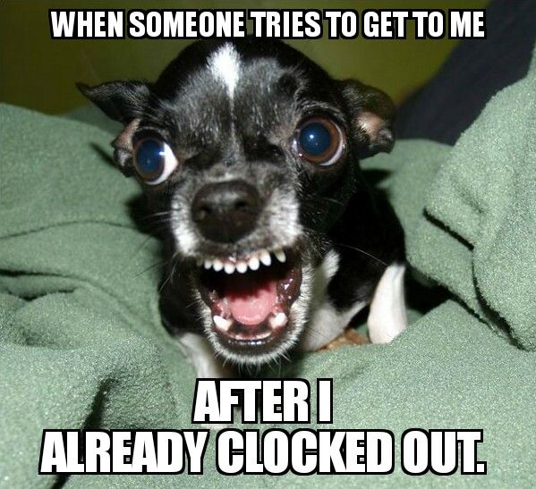 Don't talk to me after I clocked out - #nurse #nursing #rn #meme #funny #memes #nursingschool