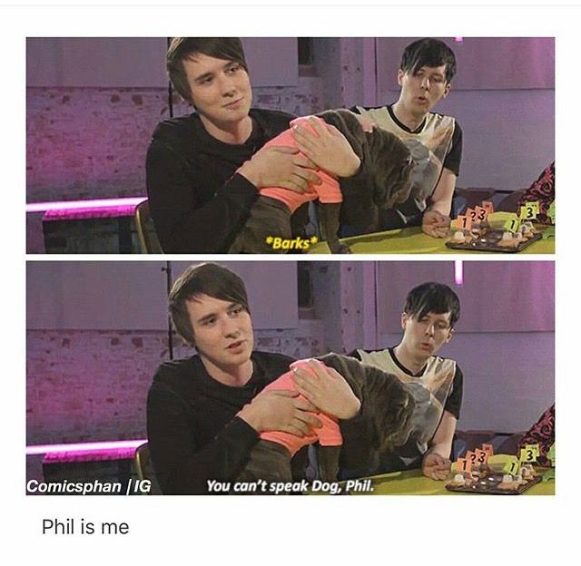 Phil is such a precious little tater tot.