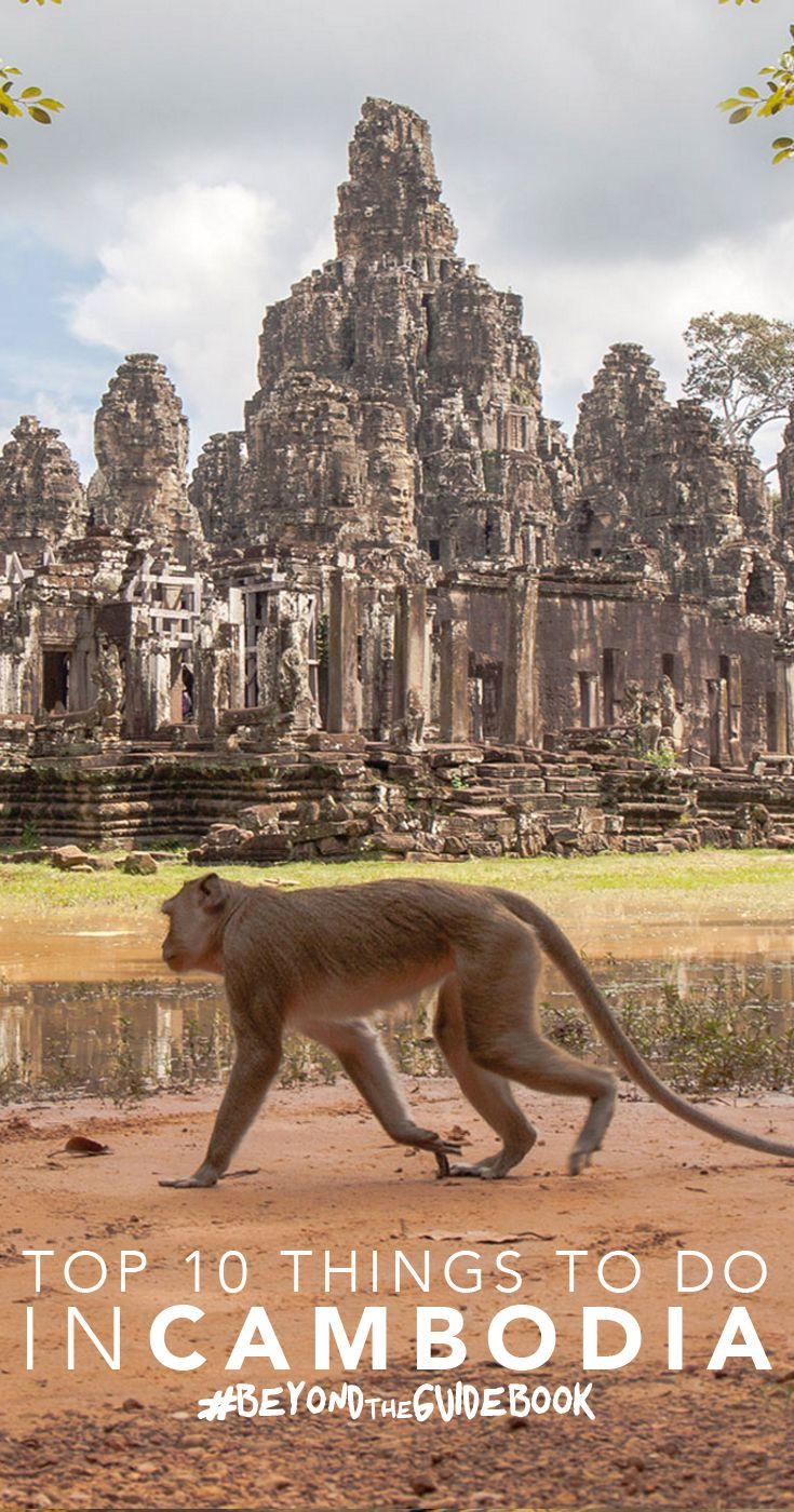 The Unusual Top 10 List for Cambodia - Monkey at Angkor Wat