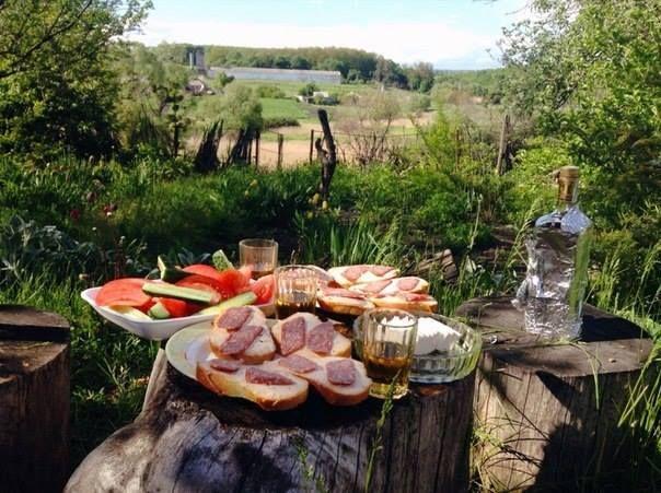 Russian picnic ~ Wellcome.