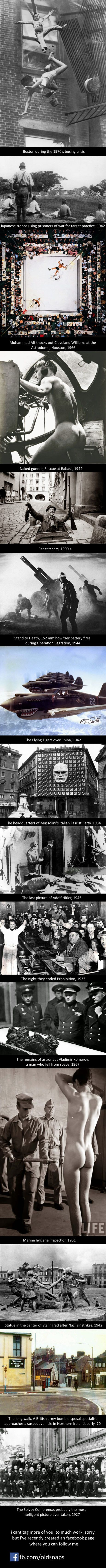 Best Conspiracies Fun Facts Oh My Images On Pinterest Wtf - 15 amazing facts about the internet