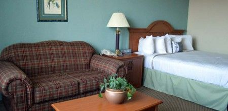Bay Park Hotel offers additional services for your pets. Learn more on http://www.bayparkhotel.com/hotel/monterey-bay-hotels/