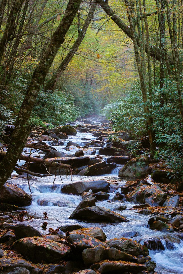 Alum Cave hiking trail in the Great Smoky Mountain…