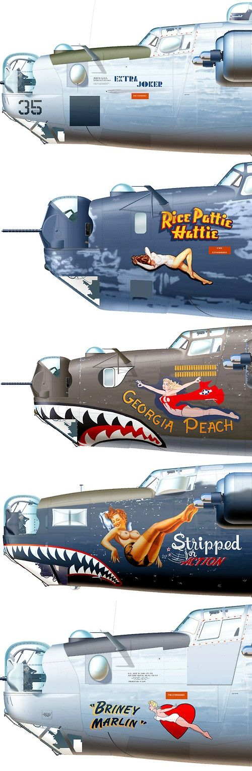Consolidated B-24 Liberator Aircraft Nose Art. #Aircraft #WW2…