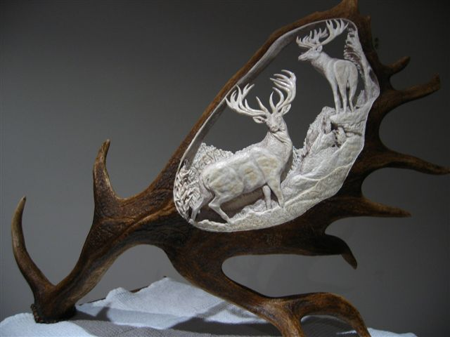 Images about antler carving on pinterest wood