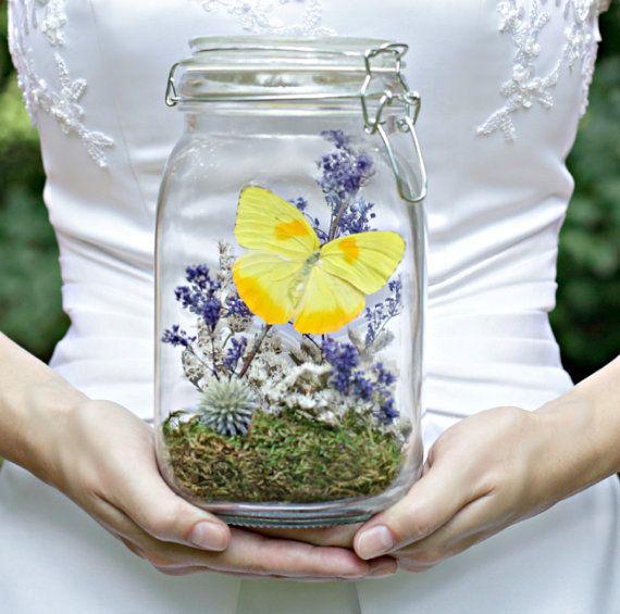 Butterfly Terrarium Kit, Motheru0027s Day Gift, Wedding Decor, Yellow U0026 Purple,  DIYer, Kits And Tutorials, Craft, Nature, Outdoors, Gift For Her