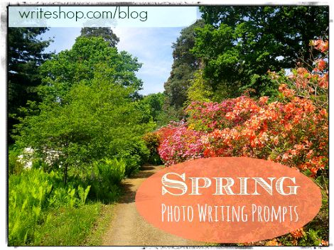 Excite a child's imagination with these photo-inspired spring writing prompts!