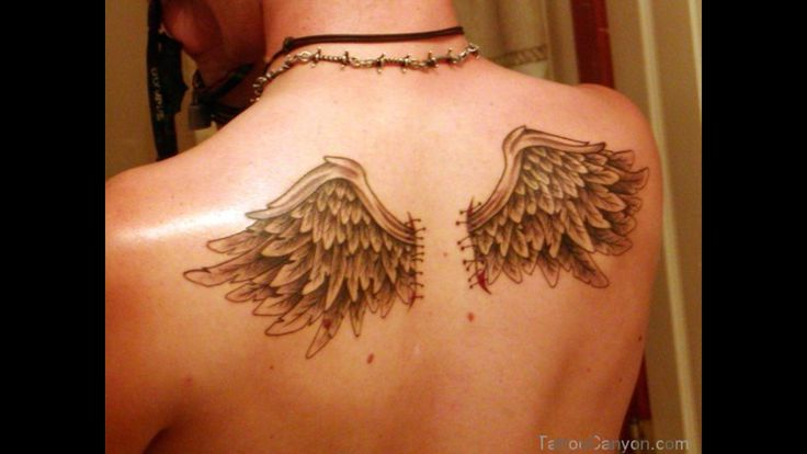 Cat With Angel Wings Tattoo 3d angel wing tattoos back ...