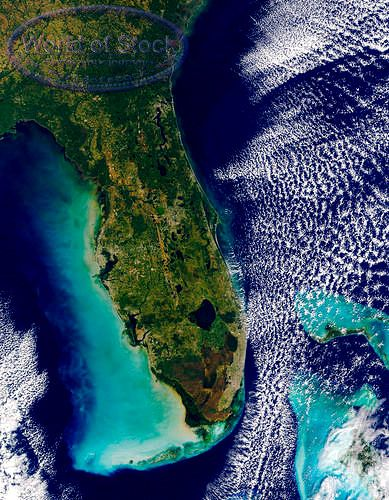 the beautiful state of Florida~
