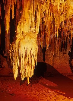 Australian Cave Tours, Cave Diving, Caving Adventures, Trips, Holidays and Location Guide
