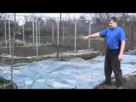 Борьба с сорняками׃  Черная пленка, 1-й сезон (2014) - YouTube