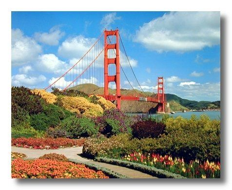 Look Wow! This beautiful wall poster is sure to add a unique style to your room setting and goes with all décor style. It's an excellent gift for every nature lover. This poster display image of San Francisco Golden Gate Bridge in such a beautiful way that is sure to catch lot of attention and add a beautiful natural charm into your home. This poster will transform the entire look of your walls. Ensures high quality with perfect color accuracy.