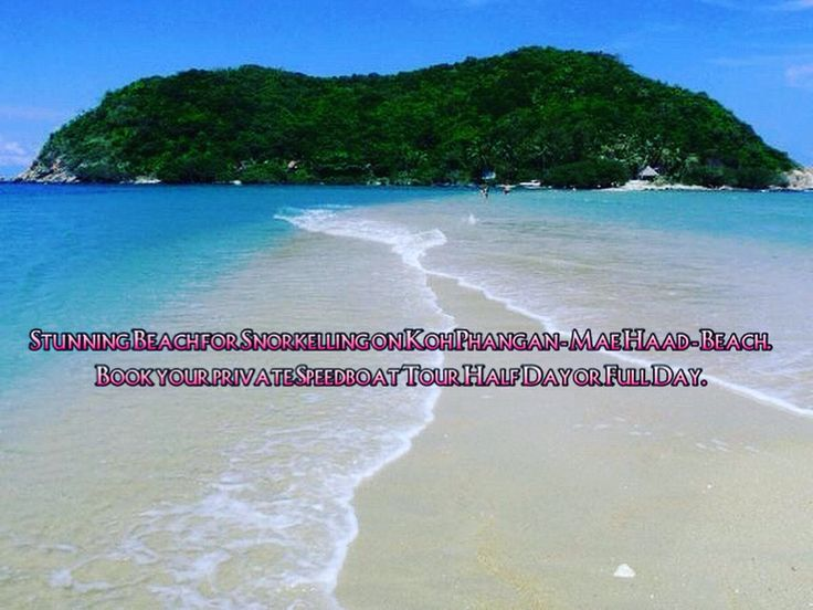 5. May - Half Day or Fullday Speedboat Charter to Koh Phangan available:   Feel free to contact us under: Tel Eng +66(86)476 1245 Tel Thai +66(86)476 1240 Office +66(77) 427 119  Www.samuiboatcharter.com Liam@samuiboatcharter.com  Line ID: samuiboatcharter