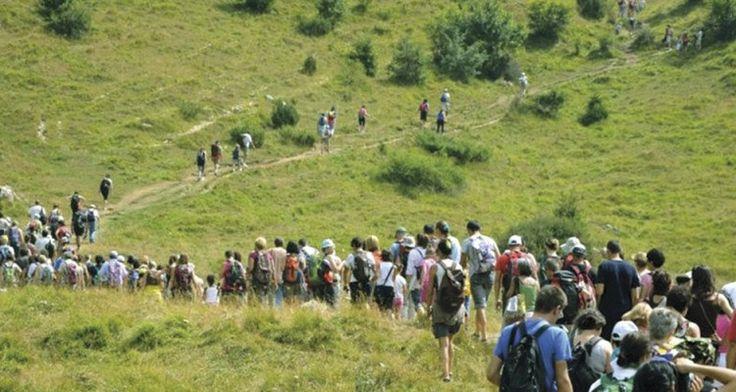 Passeggiate urbane e trekking alla scoperta de #labuonapianta i laboratori per adulti e bambini sono già partiti :)