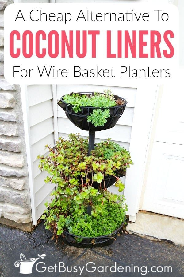 A Cheap Alternative To Coconut Liners For Hanging Baskets Planters In 2020 Basket Planters Diy Window Box Planter Planter Liners