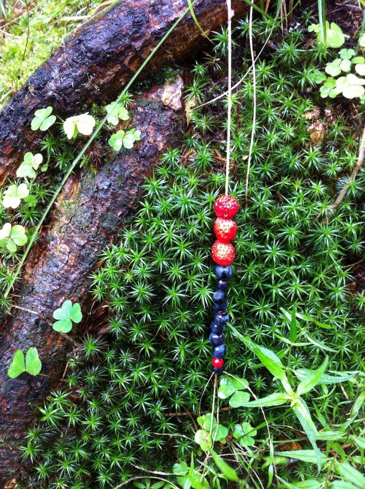 Naturens eget spiskammers. Suluvann, Norway