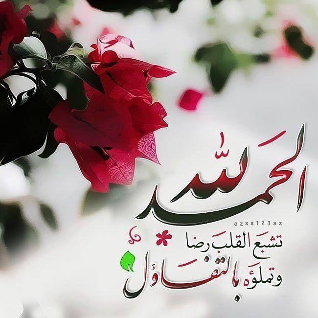 تشبع القلب رضا Quran Quotes Inspirational Romantic Love Quotes Islamic Information