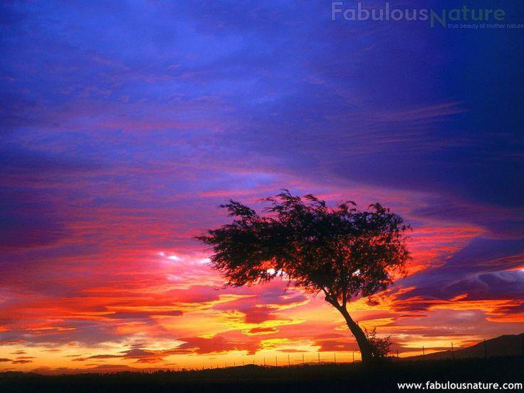 Sunrise, Palmdale, California